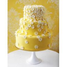 Торт на день рождения 13